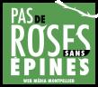 logo-PDRSE-webmedia